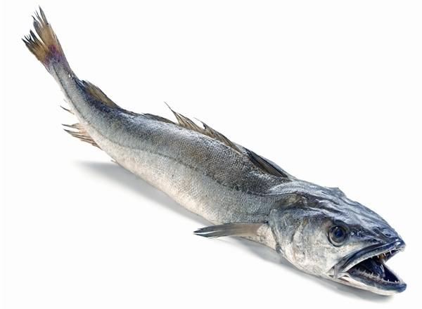 ¡pescado para mi!