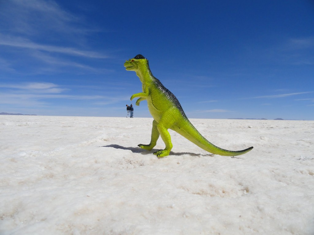 NOLAchef-bolivia-south-america-salt-flat